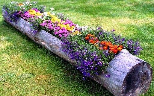 Клумба из бревна под цветы